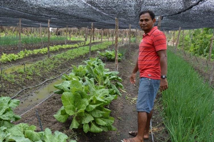 Eine Agrarkooperative