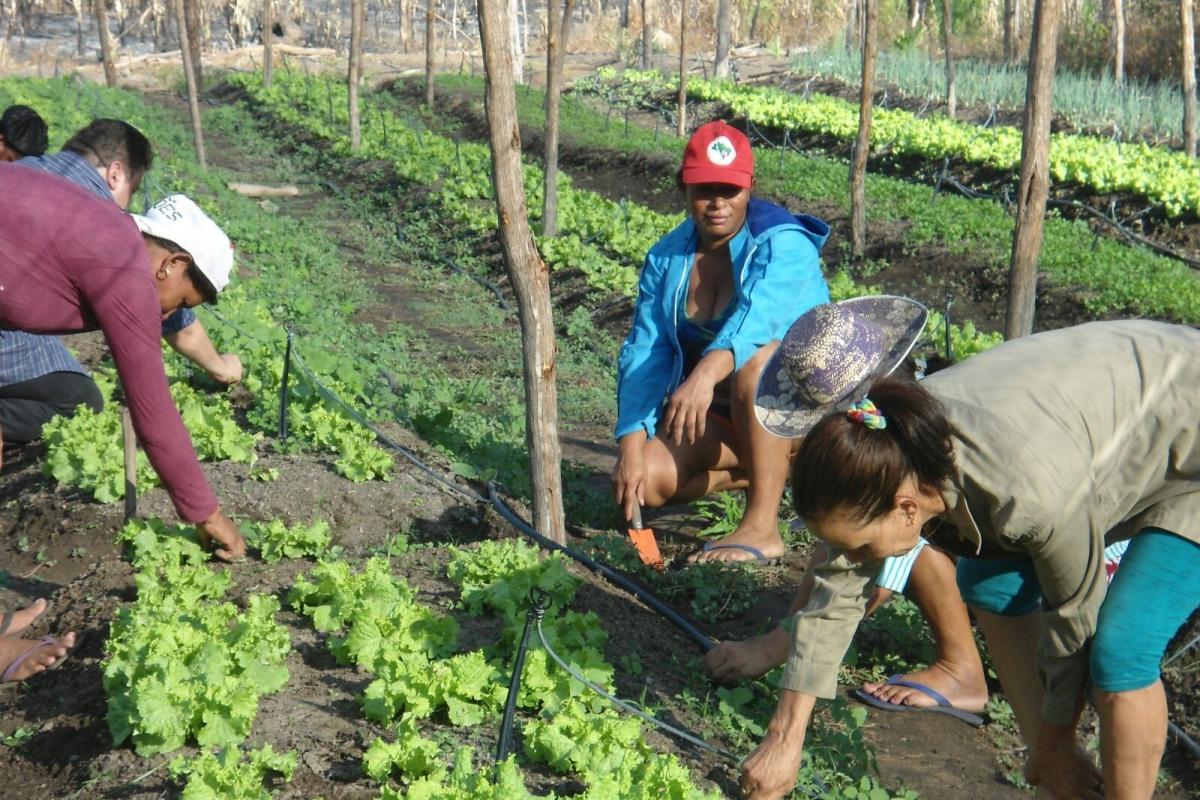 Agrarkooperative der Salvatorianer